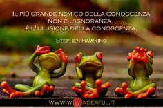 Il più grande nemico della conoscenza non è l'ignoranza, è l'illusione della conoscenza. #Hawring #conoscenza #crescitapersonale