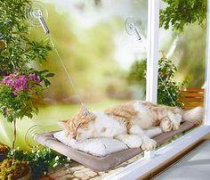 Yeni ürünümüz Sunny Seat Cama Asılan Kedi Yatağı  stoklarımıza girmiştir- Daha fazla hediyelik eşya,hediyelik,bilgisayar ve pc,tablet ve oto aksesuarları kategorilerine bakmanızı tavsiye ederiz http://www.varbeya.com/urun/sunny-seat-cama-asilan-kedi-yatagi