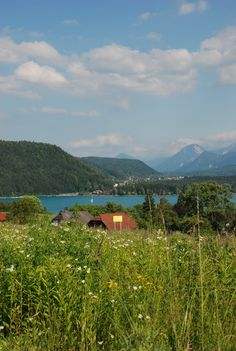 Early summer in Austria - Faaker See