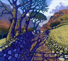 Bwlch Llyn Bach by Chris Neale