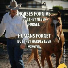 Forgive & forget - Horses Funny - Funny Horse Meme - - Forgive & forget Horses Funny Funny Horse Meme Forgive & forget The post Forgive & forget appeared first on Gag Dad. The post Forgive & forget appeared first on Gag Dad. Equine Quotes, Equestrian Quotes, Equestrian Problems, Equestrian Fashion, Equestrian Outfits, Pretty Horses, Beautiful Horses, Beautiful Lines, Yorkies