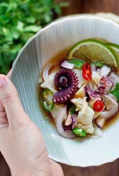 CEVICHE NIKKEI ~~~ as with the birth of chifa, that which has risen from the fusion of chinese and peruvian cuisines, when the flavor profile and techniques of modern or traditional or japanese dishes are combined with the foods and cooking techniques of indigenous peruvians, it is called nikkei. this post's link goes for a ceviche dish pairing octopus, white fish, ginger, chile, cilantro, and lime. [Peru, Nikkei Cuisine] [condospalillos] [chile, chilli, chili, pepper, chili pepper, hot…
