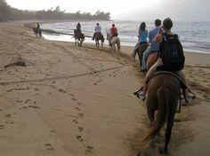 Puerto Rico Beach / Horse Riding.