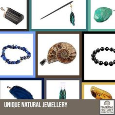 Quirky Natural Jewellery - Shop the collection, website updated daily, click here now www.NaturalHistoryDirect.com