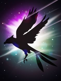 Phoenix silhouette in space | University of Phoenix #univerro