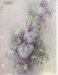 Lilac 85 by Sonie Ames China Painting Study 1978 | eBay