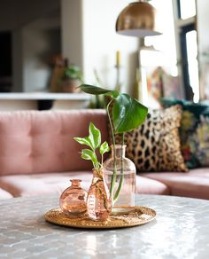 Home Decorating Tips On A Budget Coffee Table Fireplace, Coffee Table Plants, Plant Table, Black Coffee Tables, Coffee Table Styling, Coffe Table, Decorating Coffee Tables, Table Decor Living Room, Deco Table