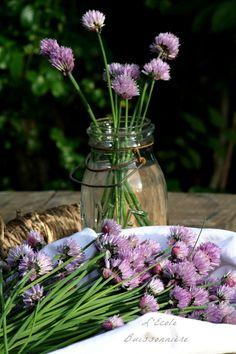 L'Ecole Buissonnière: Vinaigre de fleurs de ciboulette