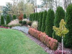 Beautiful Flowers Garden, Beautiful Gardens, Garden Landscape Design, Diy Garden Decor, Garden Planning, Garden Inspiration, Backyard Landscaping, Plants, Outdoor