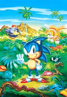 369 Best Sonic The Hedgehog Images Videogames Hedgehog Hedgehogs
