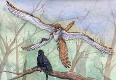 A gliding Changyuraptor drops in on a sleeping Microraptor. Reconstruction by Christopher DiPiazza.