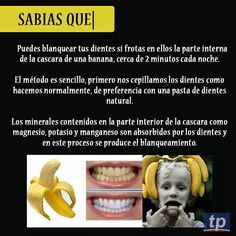 Sabias que... #Nutrición y #Salud YG > nutricionysaludyg.com #nutricionysalud Healthy Beauty, Healthy Life, Good To Know, Did You Know, Curious Facts, Interesting Information, Wtf Fun Facts, Psychology Facts, Better Life