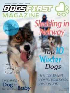 Check it out guys, second issue of Dogs First Magazine is now available. The first 3 issues are FREE! Fat Dogs, 3 In One, Zoo Animals, Told You So, Magazine, Guys, Check, Free, Warehouse