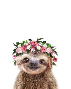 Baby Sloth With Flower Crown, Baby Animals Art Print By Synplus Carry-All Pouch . Baby Sloth With Cute Baby Sloths, Cute Sloth, Baby Otters, Baby Koala, Baby Baby, Baby Animals Pictures, Cute Animal Pictures, Cute Little Animals, Cute Funny Animals