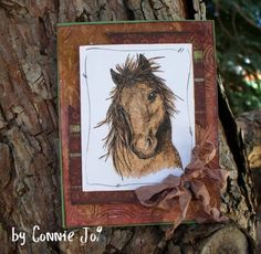 MMTPT150 Max the Horse