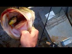 Topwater Largemouth Bass Fishing with Frogs via BassFishingAlabama.com