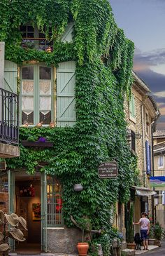 Provence Art Gallery ,Provence,France (liked the way the creeper plants engulfed the building creating a harmonious balance of nature and architecture)