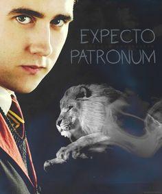 Neville <3 Harry Potter Disney, Dobby Harry Potter, Harry Potter Fan Art, Harry Potter Universal, Harry Potter Characters, Harry Potter World, Harry Potter Memes, Ron And Harry, Neville Longbottom