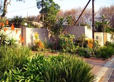 Waterwise Garden Design rock garden :: garden design in durban, kzn, south africa