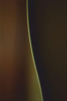 kpalczak | Krawędzie / Edges photo