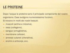 Dopo l'acqua le proteine sono il principale componente del nostro organismo. Esse svolgono numerosissime funzioni. Si trovano in molti dei nostri tessuti: