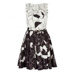 Closet Floral Belted Skater Dress - Bloomsbury - Classics