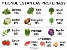 Proteínas animal vs vegetal