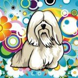 From Havanese Site on Facebook. Not sure who drew it or would give credit.