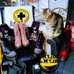 Dr Martens chat - Photo issue du Groupe Dr Martens https://www.facebook.com/groups/drmartensforever #drmartenstoujours #drmartenstoujours #drmartens #drmartenstyle #docmartens #drmartensoriginal #drmartensfrance #vintage #doc #docslife #docs4life #dr #martens #boots #cuir #dms #lifestyle #worndifferent #bootslover
