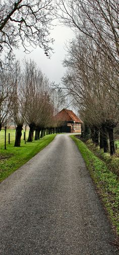 Sheepfold Haaksbergen on a foggy day (by: harry eppink)