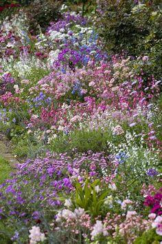 Um jardim para cuidar: COTTAGE GARDEN