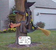 A funny halloween picture of a witch who has crashed into a tree while flying on her broomstick