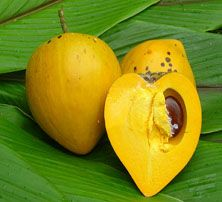 most healthy fruits canistel fruit