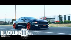 Please checkout our RaceMesh Grilles we did for PonyWorx in AU! PPONYY - THE RETURN [4k] Stance Nation, Mustang, Ford, Accessories, Mustangs