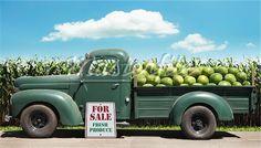 Truck farm stand
