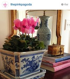 Will do this at Christmastime with my blue and white planters and paperwhites and amaryllis