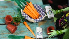 Earth Day Craft for your dollhouse!   cute little carrots!