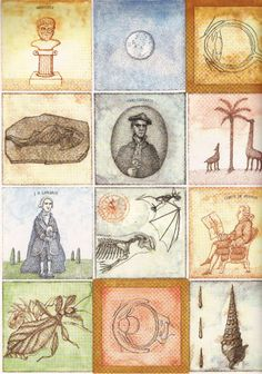 Endpapers from Peter Sis's book about Darwin, The Tree of Life.