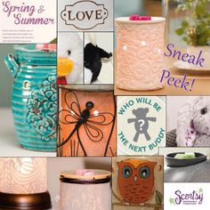 Sneak Peek of Spring/Summer Scentsy Catalog 2014 Catalog starts March 1st amansker.scentsy.us
