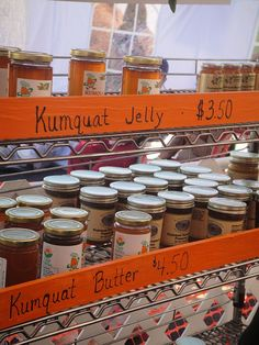 Kumquat Treats And Gifts Dade City, Stuff To Do, Southern, Florida, Treats, Road Trips, Gifts, Travel, Future
