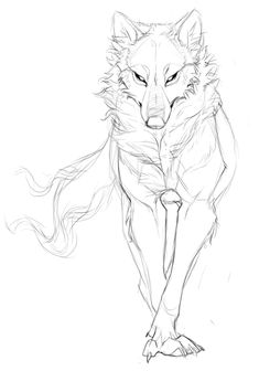 Pin by vanessa villarreal on art/drawing wolf sketch, draw, sketches. Animal Sketches, Art Drawings Sketches, Cool Drawings, Anatomy Sketches, Pencil Drawings, Anatomy Drawing, Anatomy Art, Drawings Of Wolves, Unique Drawings