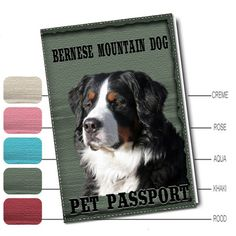 Hondenfoto Op Dierenpaspoort - Berner Sennen - Woezedoes