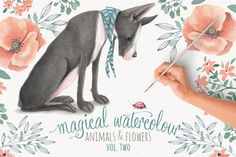 Magical Watercolor graphics Volume 2 by Lisa Glanz on @creativemarket $18