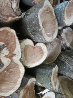 hearts in nature ~ woodpile heart.