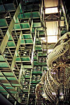 """La Biblioteca Vasconcelos, obra del arquitecto mexicano Alberto Kalach; es un recinto luminoso gracias al juego de transparencias que le dan el techo y las paredes de cristal. Tiene tres niveles superiores y una planta baja, y constituye una admirable muestra de la arquitectura moderna.   En el centro de la biblioteca se encuentra flotando entre los estantes, la obra """"Mátrix Móvil"""" del artista Gabriel Orozco, quien transformó una estructura ósea de ballena gris en una pieza de arte única."""