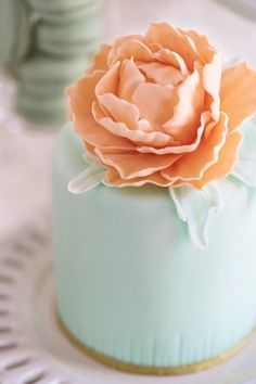 Mint wedding cake topped with a peach colored flower Peach Mint Wedding, Mint Wedding Cake, Wedding Cakes With Cupcakes, Wedding Colors, Cupcake Cakes, Pretty Cakes, Beautiful Cakes, Amazing Cakes, Color Durazno