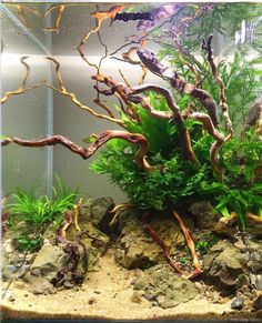 11 best aquascaping design ideas to decor your aquarium 00009 Fish Aquarium Decorations, Aquarium Fish Food, Aquarium Garden, Aquarium Landscape, Nature Aquarium, Aquascaping, Betta Tank, Betta Fish, Nano Cube