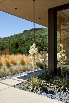 Sinbad-Creek-House-Swatt-Miers-Architects-4