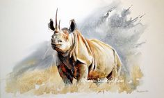 Original paintings and Limited Edition prints that capture the spirit of Africa and the creatures that roam it. Wildlife Paintings, Wildlife Art, Animal Paintings, Animal Drawings, African Animals, African Art, Watercolor Animals, Watercolor Art, Rhino Art