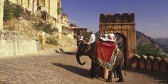 INDIA'S GOLDEN TRIANGLE & TIGER SAFARI 2016